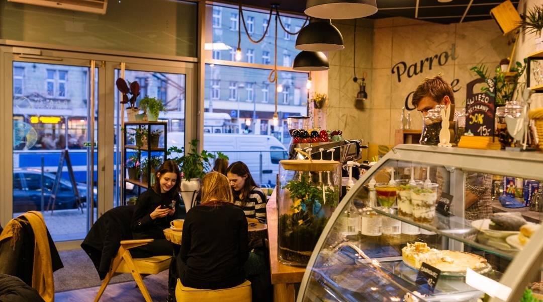 kawiarnie wrocław wnętrze Parrot Coffee