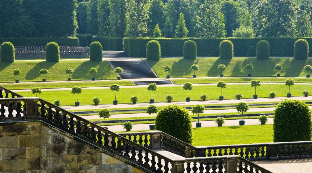 rezydencja Großsedlitz ogrod