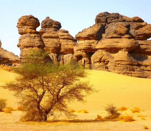 wycieczka czad afryka