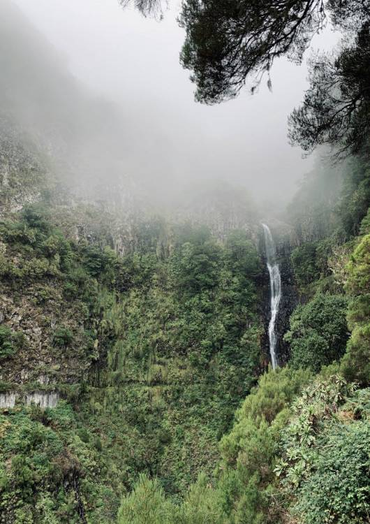 co zobaczyć na Maderze