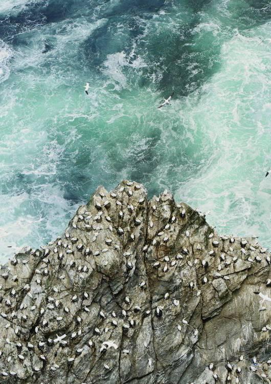 Typowym krajobrazem Isle of Skye są spiczaste skały i klify.