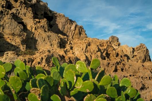 Okolice portu de la Selva; fot. Shutterstock