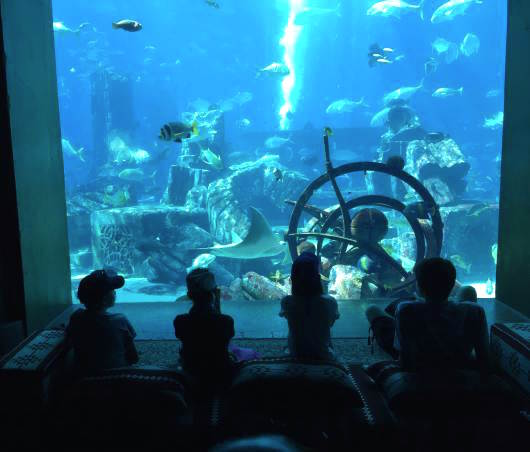 Od lewej: Zemsta Posejdona i oceanarium Lost Chambers