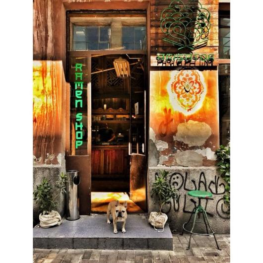 Ramen warszawa arigator ramen shop