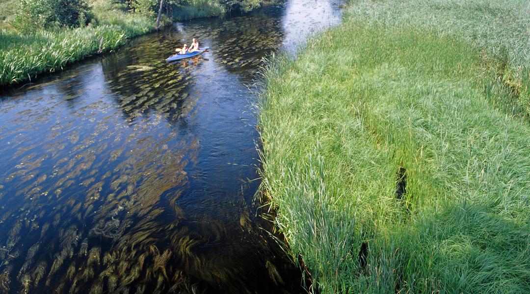 majówka spływ kajakowy