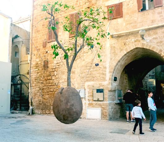 Old Jafa, czyli Stare Miasto w Tel Awiwie: wieża Zegarowa i wiszące drzewo pomarańczowe, fot. Shutterstock