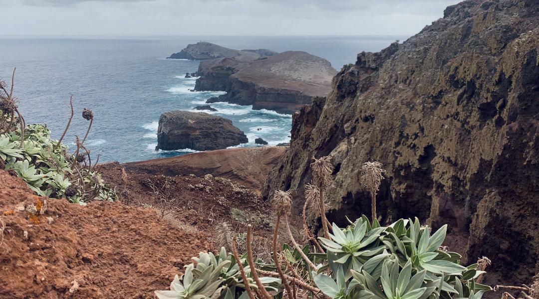 Półwysep świętego Wawrzyńca przez większość roku przypomina krajobrazem pustynię, a jedynie zimą robi się zielony.