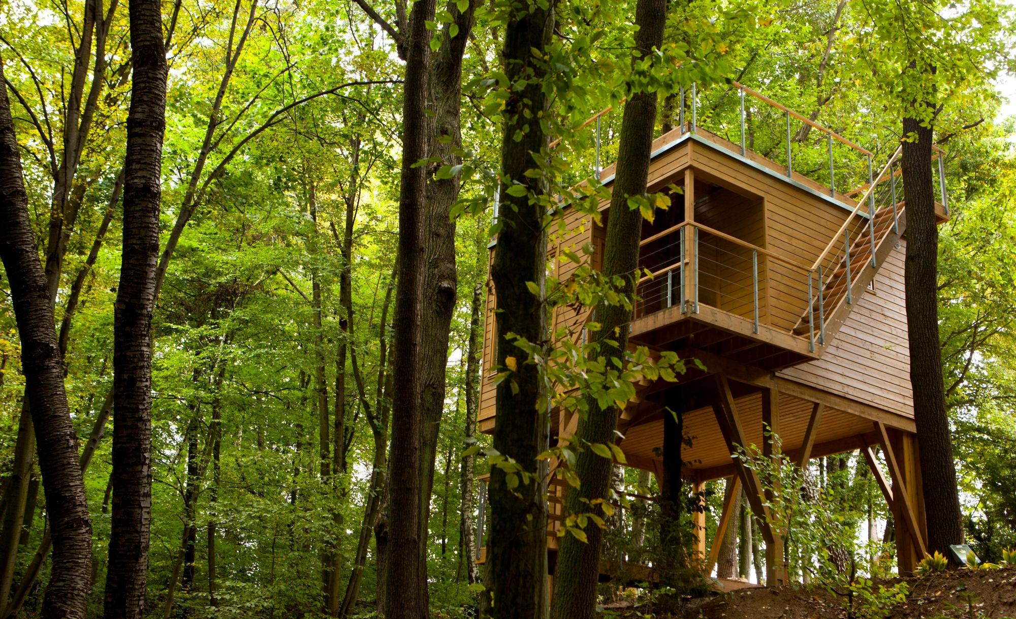 Hotel W drzewach w Nałęczowie