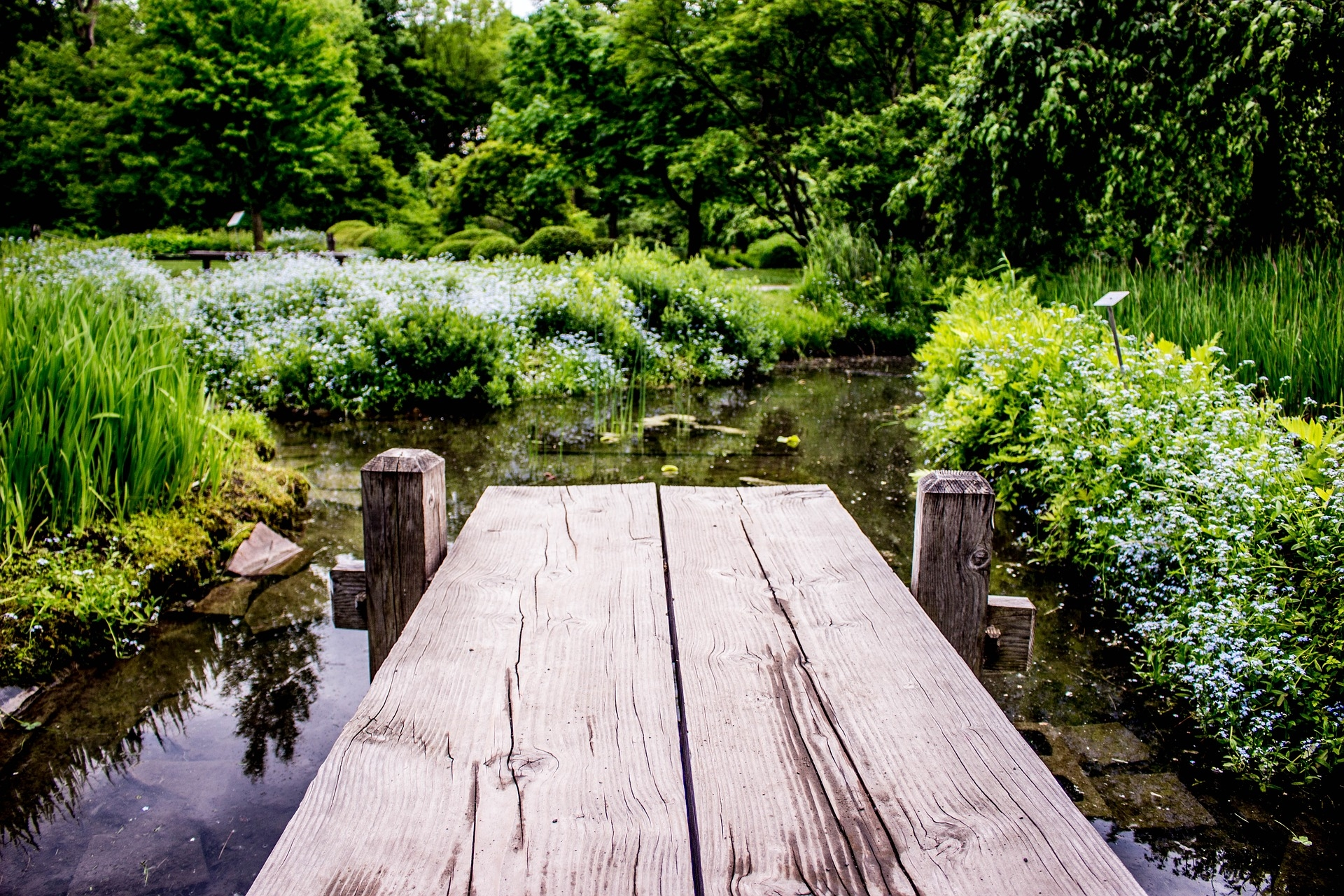 Czas na piknik: najpiękniejsze parki w Europie
