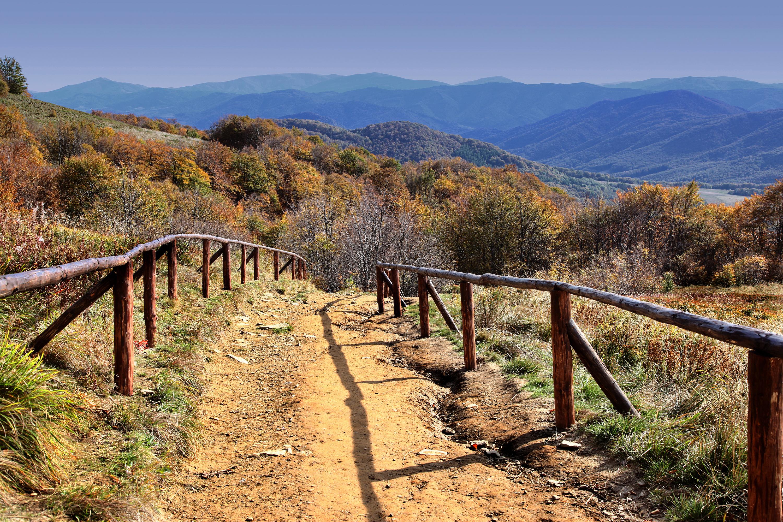 Tarnica szlak