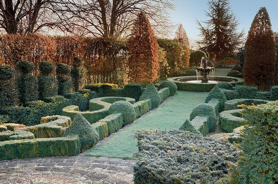 Ogród mrozem malowany