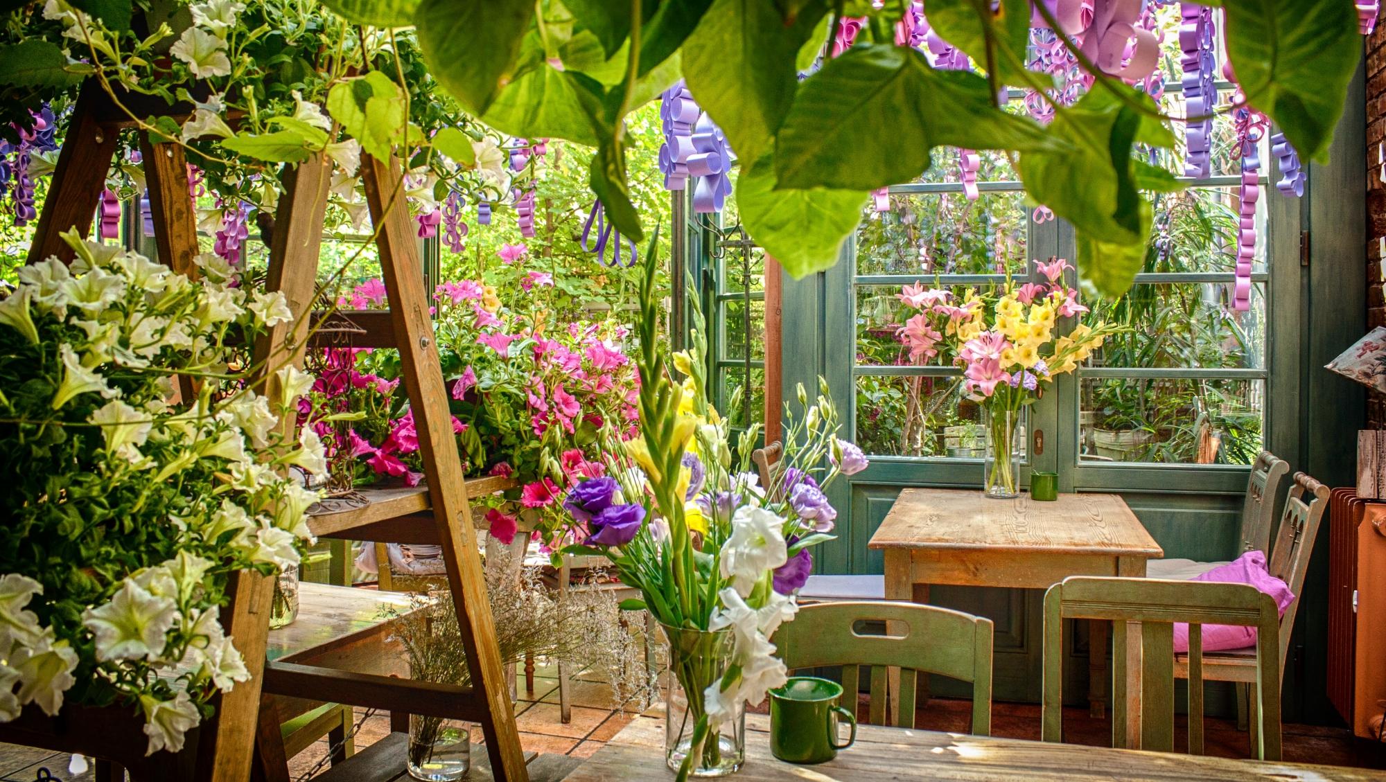 Zielona Weranda - kwitnąca restauracja w Poznaniu